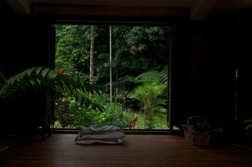 dschungelfieber teil 2 terra australis. Black Bedroom Furniture Sets. Home Design Ideas